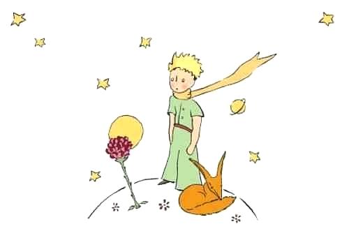 den_lille_prinsen_rosen_raven